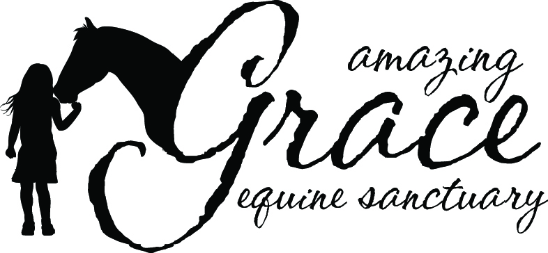Amazing Grace Equine Sanctuary
