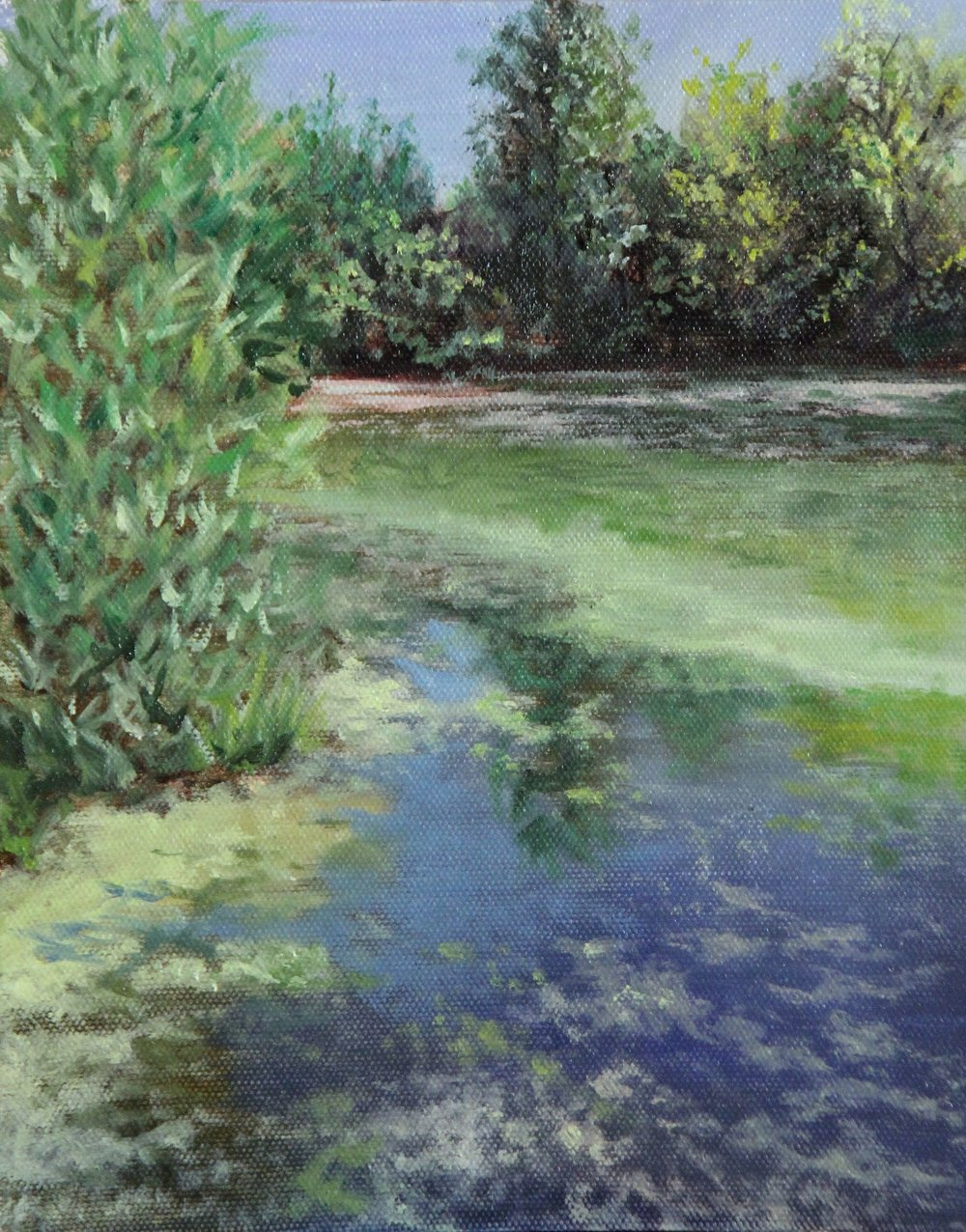 Pond 2017.jpg