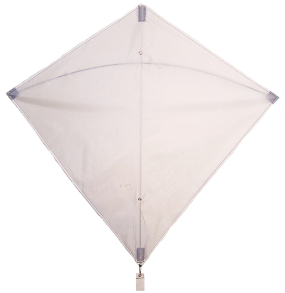 A Kite, $13