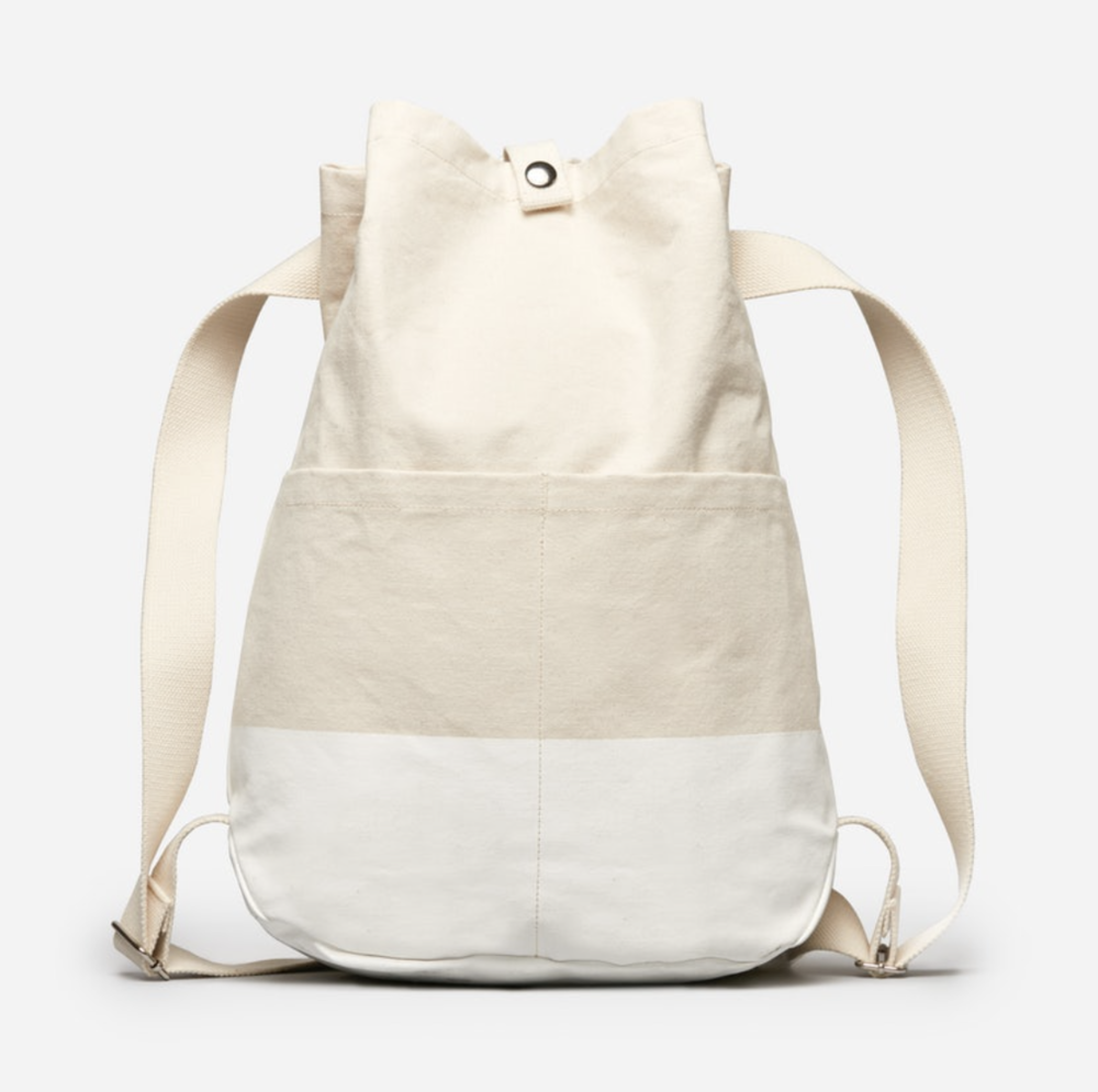 Everlane Backpack, $40