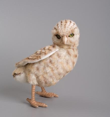 Hansa Owl, $50.