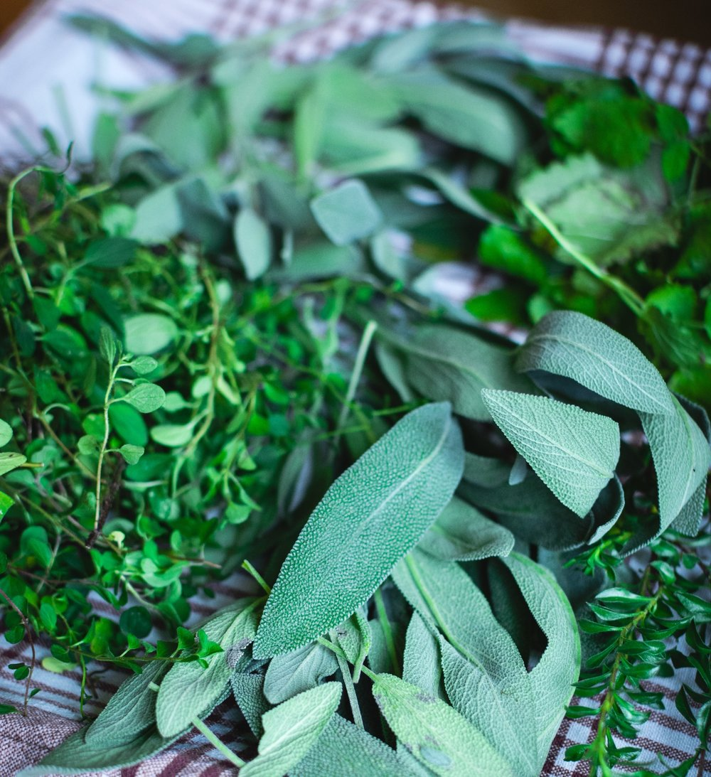 foodiesfeed.com_different-kinds-of-fresh-herbs.jpg