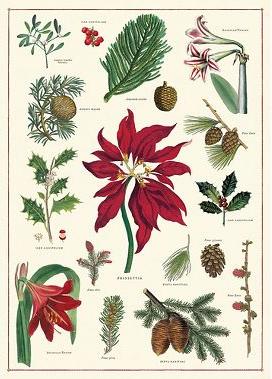 Christmas Botanica $4.95/Sheet