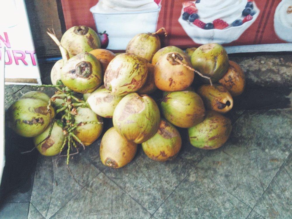 Blog - Coconut- Bali - DROP