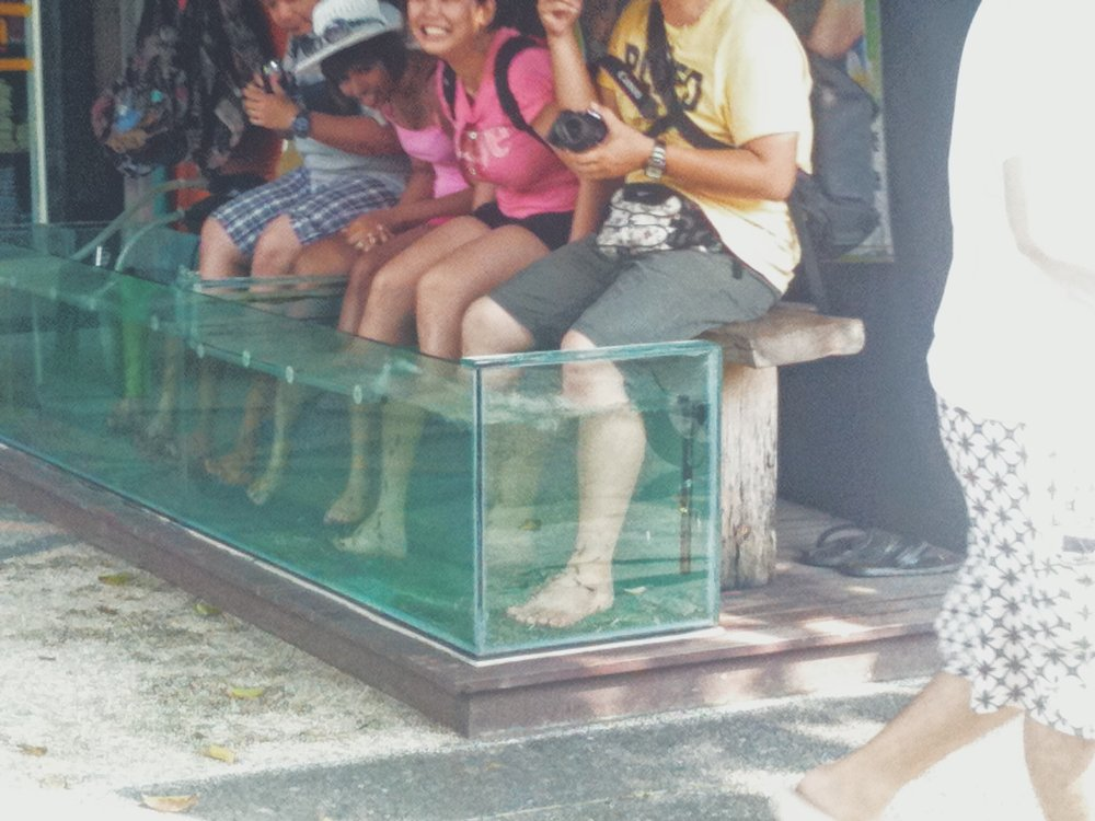 Blog - Bali - Street View - DROP