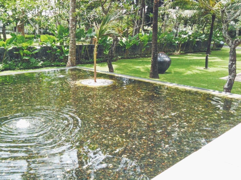 Blog - Bali - Stopped Scene - DROP