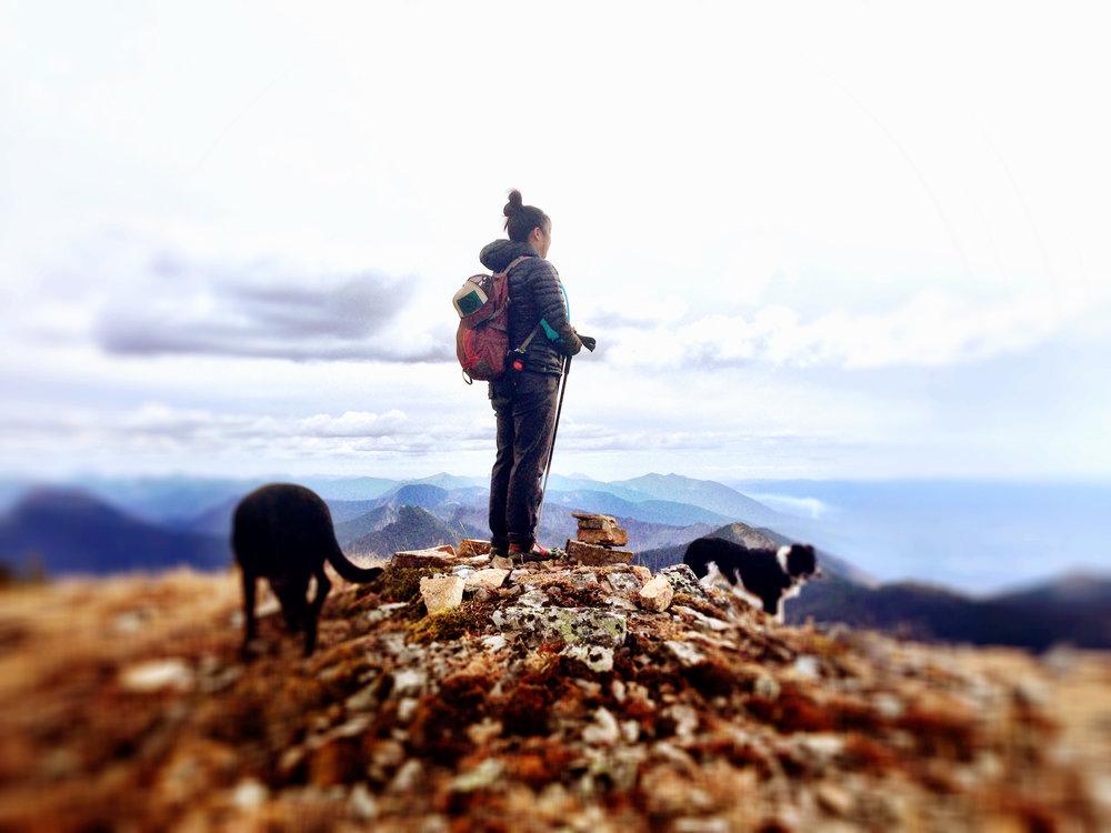 Bagging Peaks