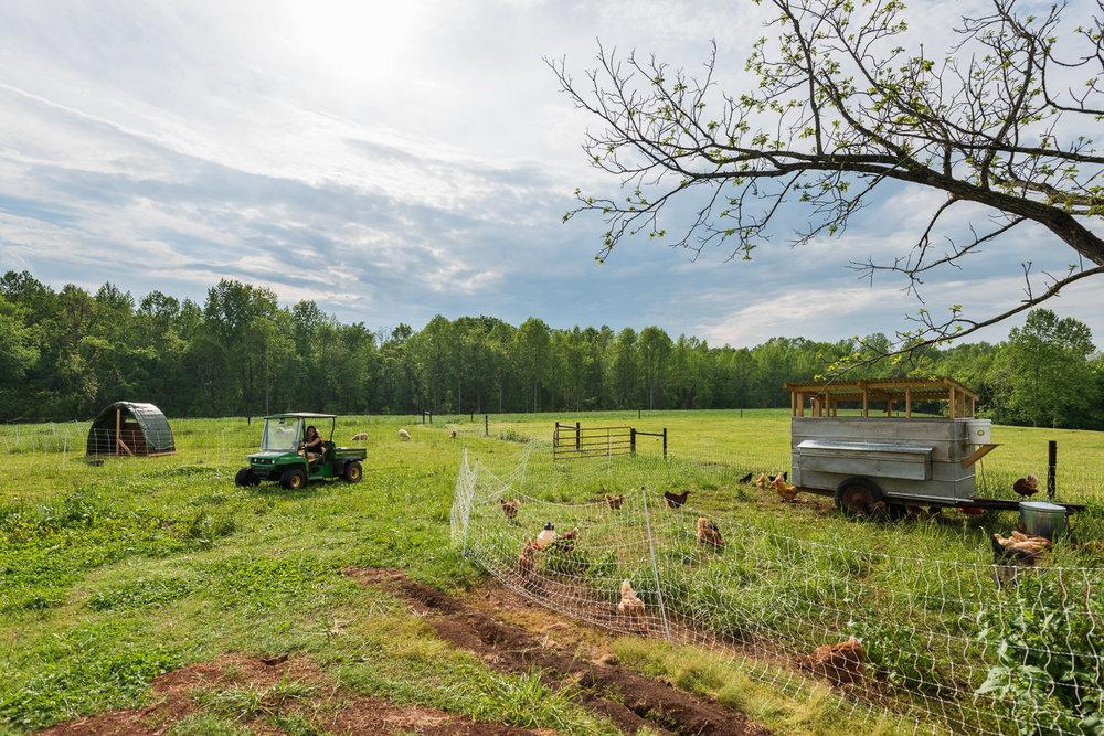 Evans-Family-Farm-42.jpg