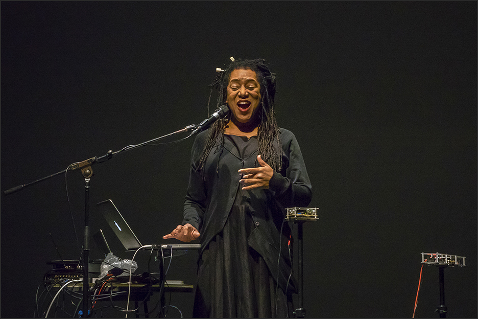 Pamela Z, Artist