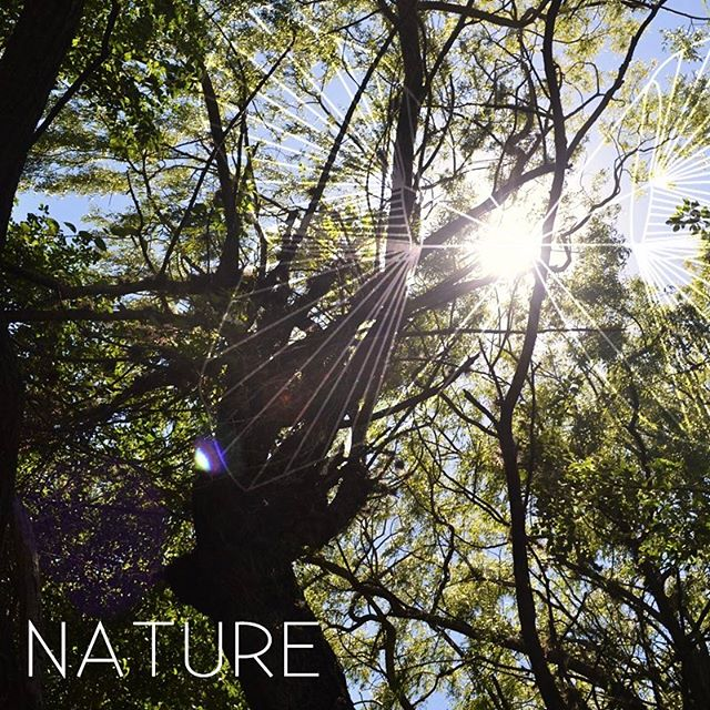 "What is natural? ""A sudden perception that object and subject are one""  With meditation we arenlooking at nature, feeling it, becoming one with it!  Start experiencing it!  LAST DAYS TO SAVE YOUR SPOT  26-28 de Mayo  @el_tular  #yogaretreat #meditationretreat #silentretreat #mukti  #eltular #thehermitageguatemala #allone #practiceandalliscoming #yogachallenge #yogaeverydamnday #yogagt #yoga #yogaeverywhere #perhapsyouneedalittleguatemala #balance #setintention #movefromtheheartup #creatingthenewdream #newearth #consciousness #grateful #healthy  #healthychoices #omyogaguatemala #ashashala #monkeyyoga #alivebefit #silence #nature #healing"