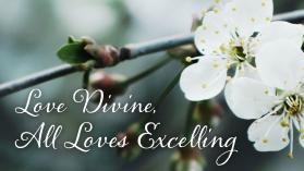 love divine.jpg