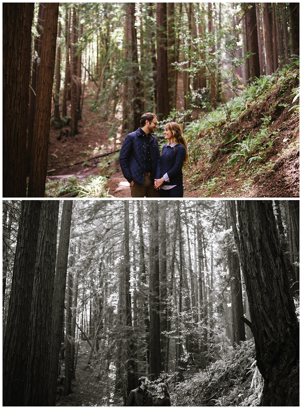 blue,chelsea dier photography,dier photography,engagament,green,oakland,redwoods engagement,