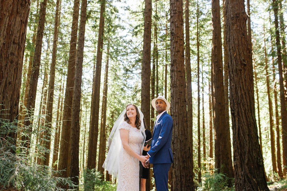 ucberkeley_botanical_redwoods_outdoor_wedding_jennyrez_cdp_0012.jpg