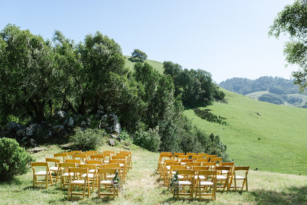 nicasio_backyard_intimate_wedding_chelseadierphotography_0050.jpg