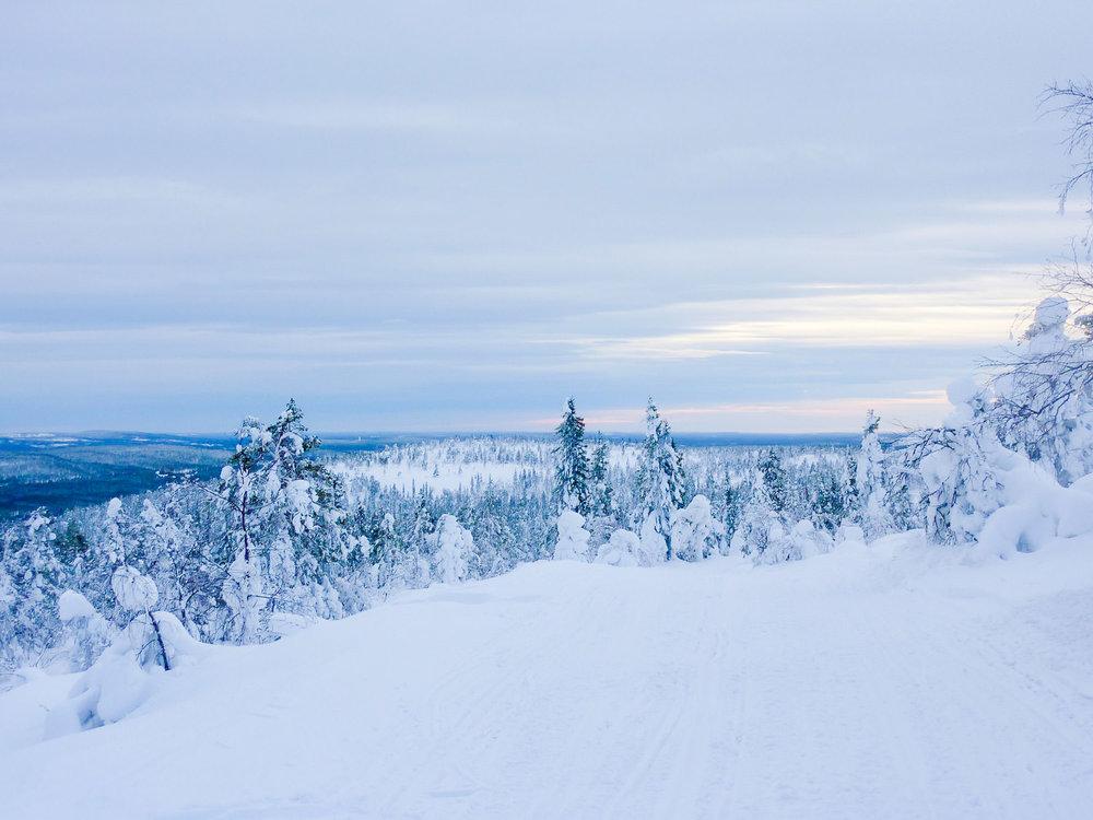 Een prachtig besneeuwd landschap in Fins Lapland