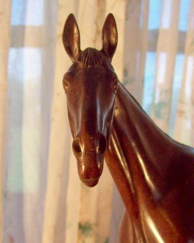 vw horse head.jpg
