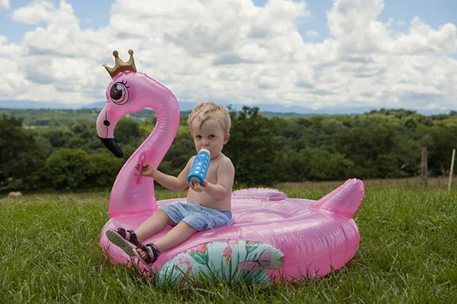 Just a boy, his bottle and a giant inflatable flamingo having a rest in the garden. As you do on a Thursday afternoon.  #candidchildhood #magicofchildhood #wildandbravelittles