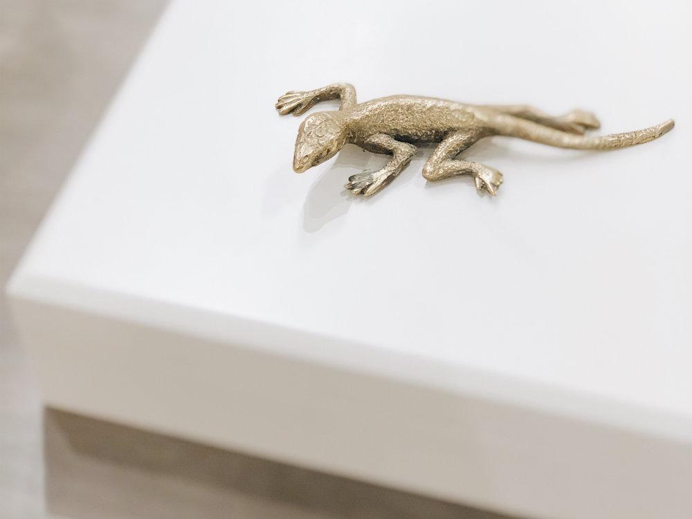 LizardBox.jpg