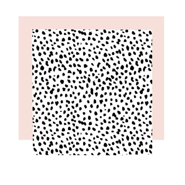 black-and-white-speckle-plain-820x532 copy.jpg