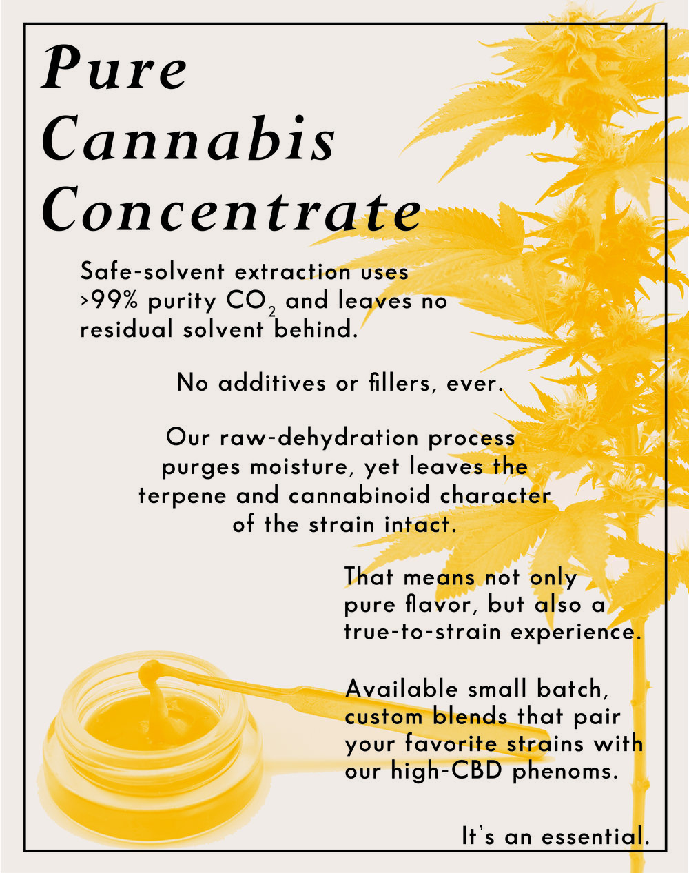 PURE CANNABIS CONCENTRATE OL-01.jpg