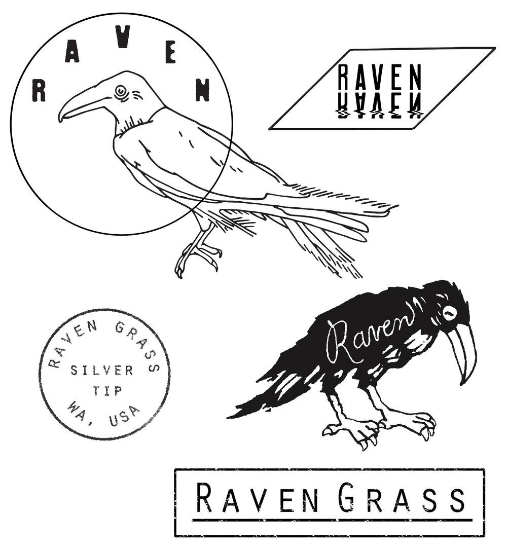 RAVEN 01.jpg
