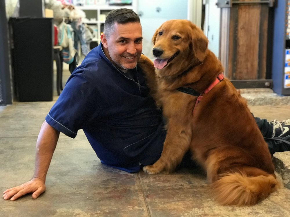 The Groomer Is In! - Schedule your appointment now with our master groomer, Luis