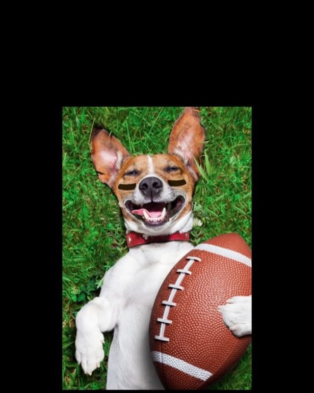 FOOD, FOOTBALL, DRINKS, DOGS!! Puppy bowl viewing party 3:00pm . Super Bowl viewing party. 6:00pm . On our new 120 inch big screen! . . . #nyccoffee #coffeebar #nyccoffeeshops #coffeetime☕️ #coffeeholics #dogcafe #footballsunday #superbowlsunday #superbowlparty #puppybowl #puppybowlparty