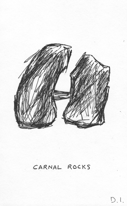 "carnal rocks, 2009 ink on paper 5 5/8 x 3 3/4 """