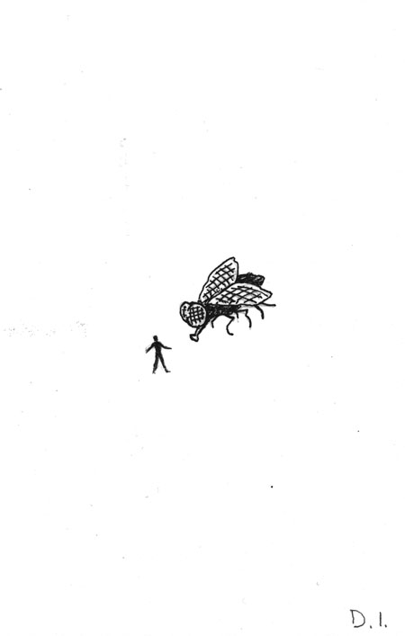 fly encounter,  2009 ink on paper 5 5/8 x 3 3/4 ""