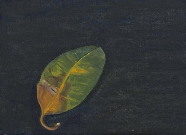 leaf 9 , 2013 oil on linen 8 x 11 inches