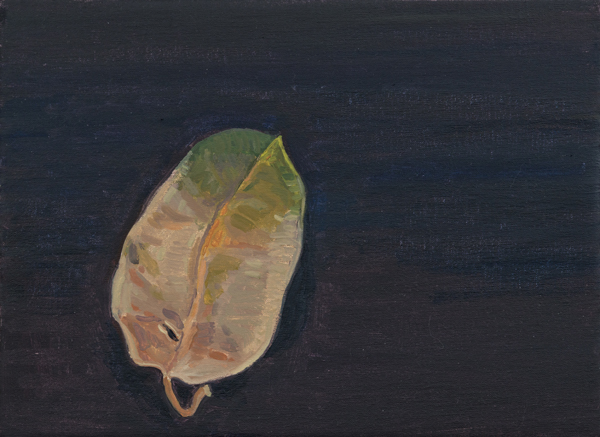 leaf 4 , 2013 oil on linen 8 x 11 inches
