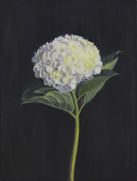 garden flower , 2013 oil on linen 16 x 12 inches