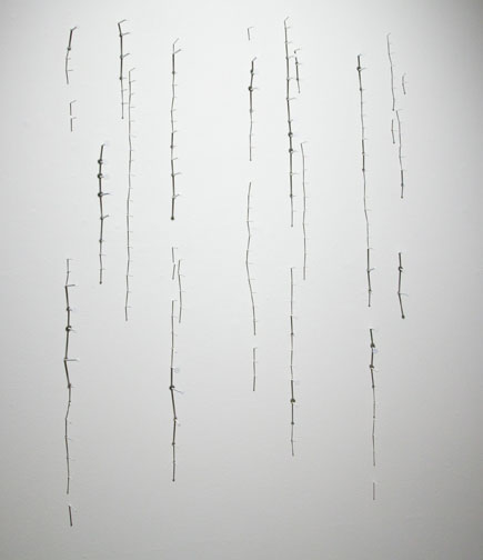 "shadow drawing #1 , 2010 nails, acrylic and shadow on wall 36 x 32"" (dimensions variable)"