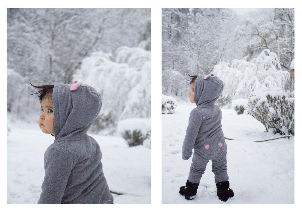 snow 2 xmas.jpg