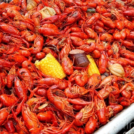 Crawfish Season is rolling! Charlie's Sausage is perfect in a boil! Use it at home, or hit up @aleonoak on Saturdays to try it! #charliessausage #crawfishboil #nolaeats #crawfishseason #nolacrawfish