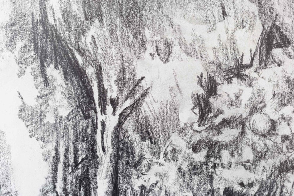 Peter Voss-Knude,  Waterfall seen out of the window of a police car  (detail), 2011, pencil on paper, ca. 90 x 100cm  Photo: Kilian Bannwart