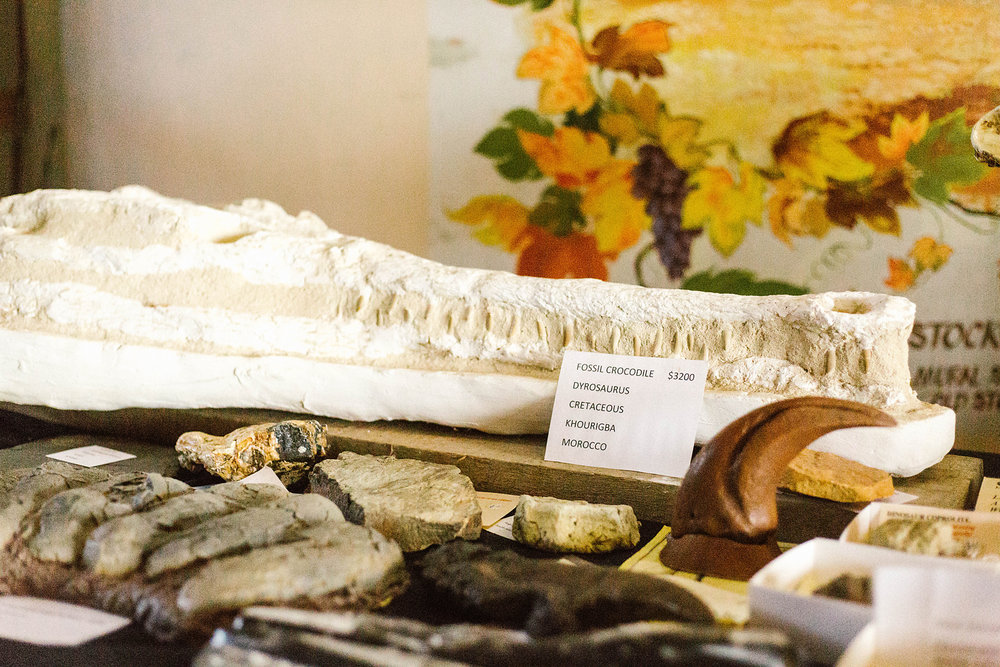 If there is someone in your life who has everything except for a fossilised crocodile, you can snap one up at  Chateau Dorrien