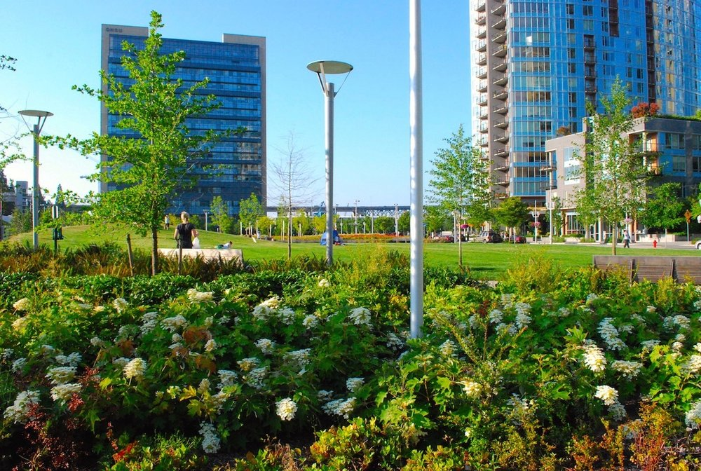South Waterfront Elizabeth Caruthers Park view.jpg