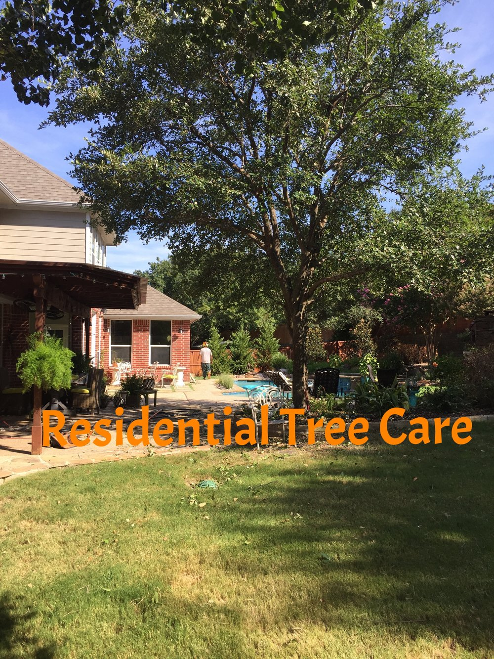 Residential Tree Care