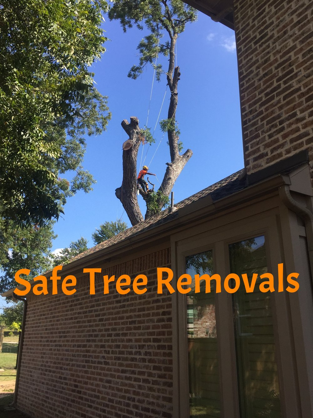 Safe Tree Removals