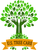 Click here to Contact us with your tree Emergency