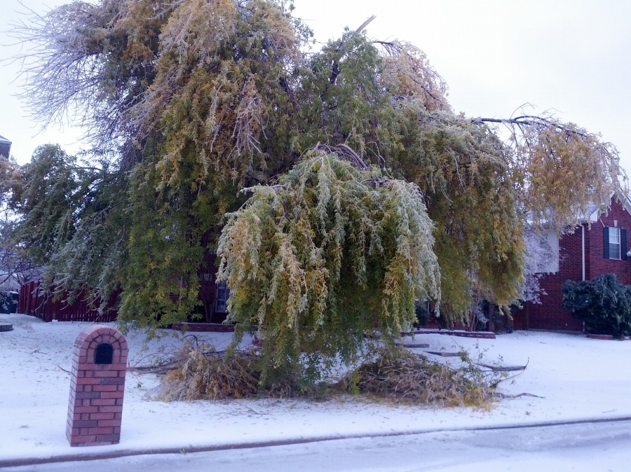 11381 Creekwood Drive during ice storm.jpg