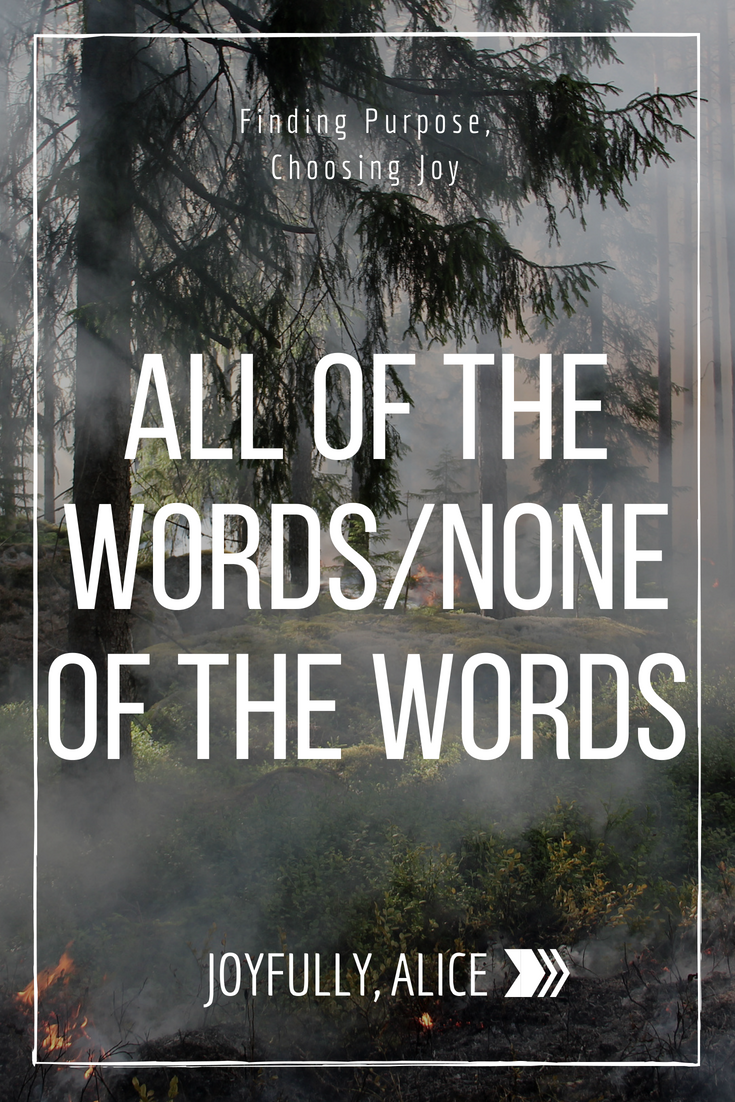 all of the words%2Fnone of the words.png