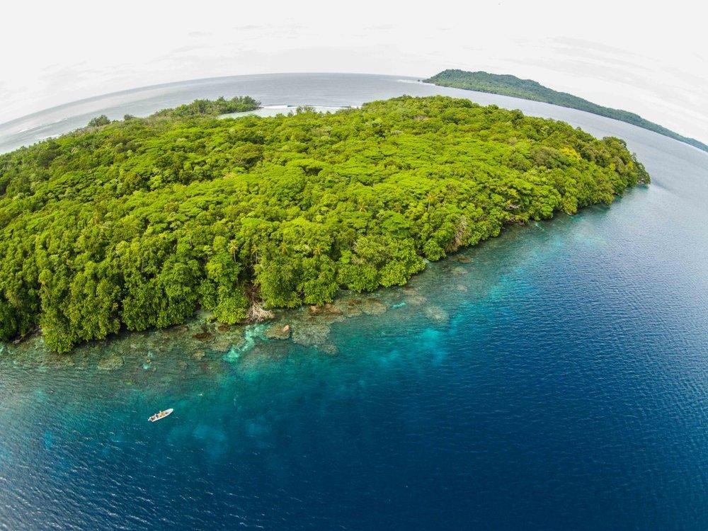 coral garden aerial
