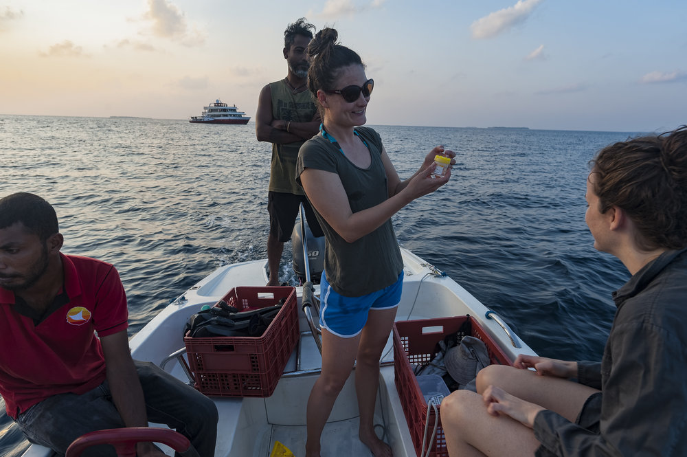 Dr. Kathryn Berry researching ocean plastic pollution on the 2016 Hydrous expedition to the Maldives
