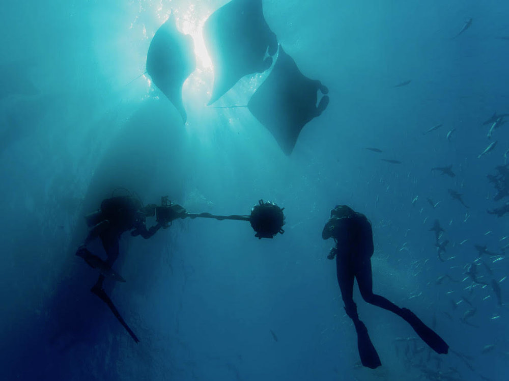 Rick Miskiv and Erika Woolsey with manta rays
