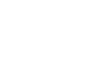 TOOinv_white_logo.png