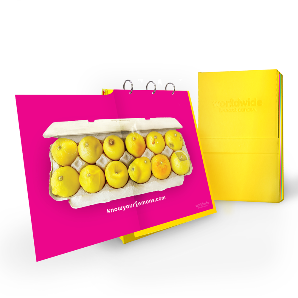 Breast Cancer Flipchart Know Your Lemons Education Kit