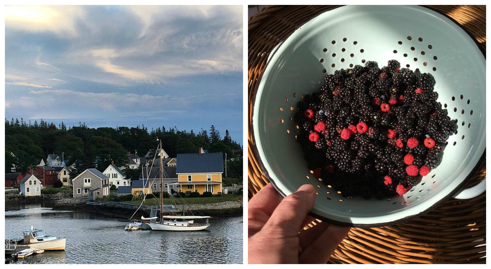Right: Fresh pickings! My dad has shared the recipe for his famous homemade Maine cobbler on his own blog,  At Home & Afield . [Instagram Source: @michaelmber]