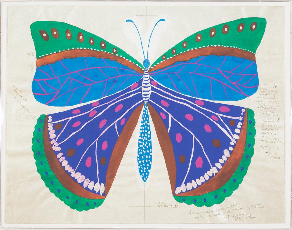 pd_pm_butterfly_blue_06b2547.jpg
